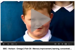 BBC - Horizon - Omega-3 Fish Oil - Memory improvement, learning, concentration